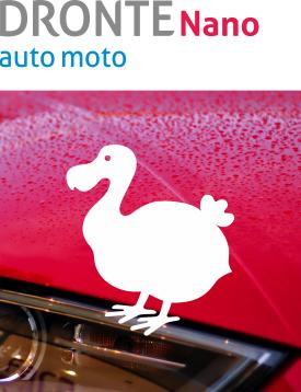 produkt_N-auto2